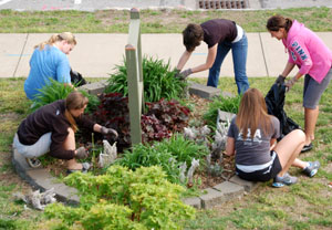 Missouri State University Landscape and Design students visit the CAC each spring and fall to weed, trim and replace plants around the center as part of the university's CASL program.